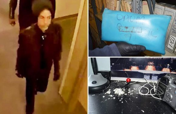 CCTV captures Prince's final hours as haunting images of his Paisley Park home show bags of drugs and pile of white powder after his fentanyl death
