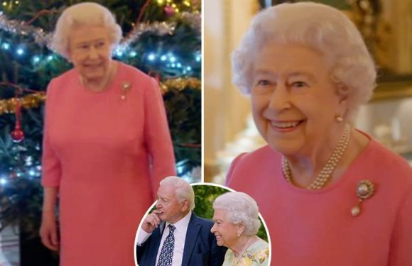 The Queen offers heartwarming and cheeky glimpse into Royal's Christmas in rare behind-the-scenes glimpse at her life