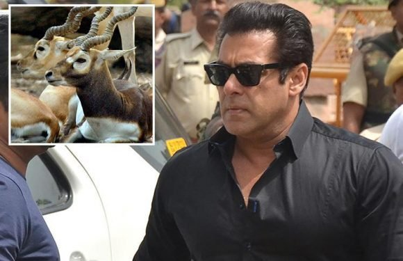Bollywood star Salman Khan sentenced to five years in prison for poaching after shooting two rare blackbuck deer on Indian wildlife reserve 20 years ago