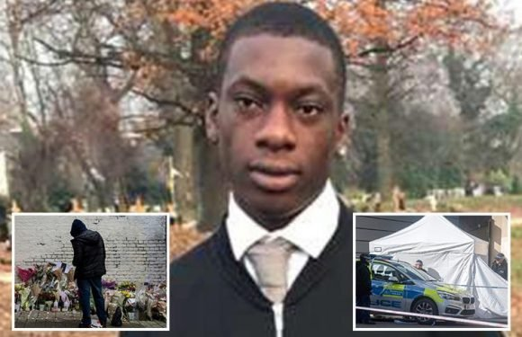 Cops hunting second young man after Israel Ogunsola, 17, was knifed to death in Hackney