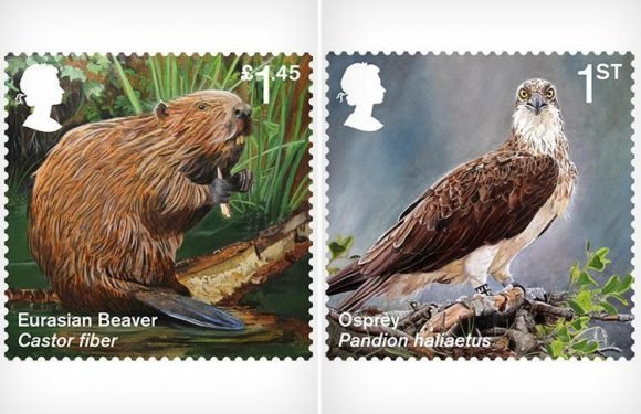 Fury as Royal Mail snubs Brexit for extinct and endangered species stamps