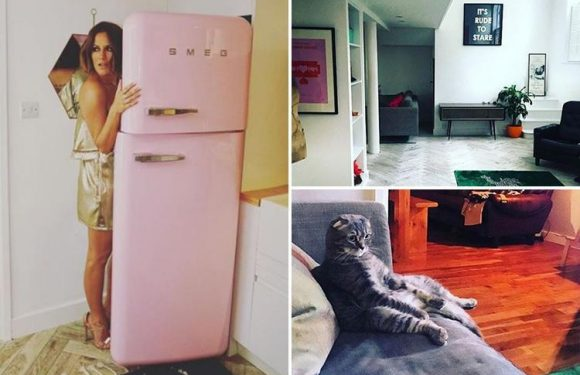Inside Love Island host Caroline Flack's trendy pad, including a pink Smeg fridge, a plush leopard print rug and a VERY cute cat