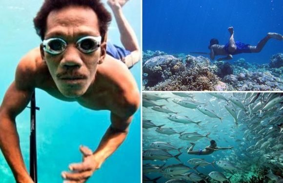 Tribe of 'fish people' evolved huge spleens so they can dive 230ft below ocean in first example of human adaptation to deep diving