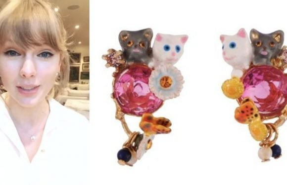 Taylor Swift Wore The Most Over-The-Top Cat Earrings — And You Can Buy Them Online