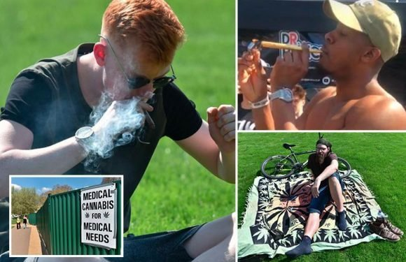 Hundreds of pot smokers invade Hyde Park for '420' day to promote legalisation of marijuana