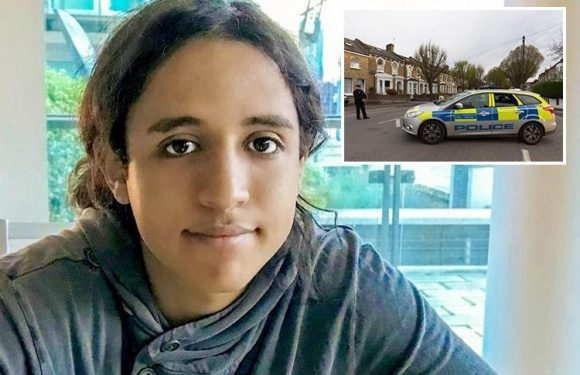Forest Gate stabbing victim Sami Sidhom, 18, pictured for first time after 'A star' student knifed to death in London