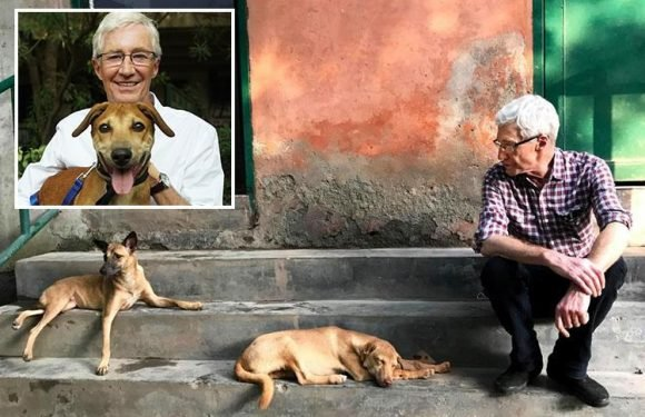 Paul O'Grady relives moment he nearly died after playing with wounded dogs in India – but admits he wants to go back