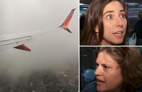 Screaming Southwest Airlines passengers vomited, prepared to die and text their final goodbyes as plane struggled to land in fierce storm