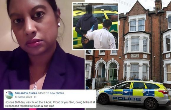 First picture of mum stabbed to death in £1m home as London murder toll hits 60