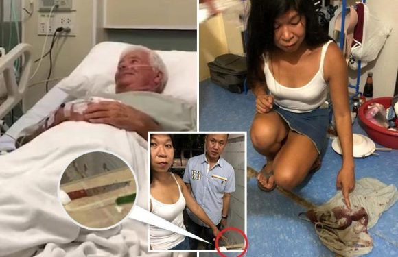 Brit OAP stabbed with nine-inch kitchen knife by Thai girlfriend when he tried to DUMP her