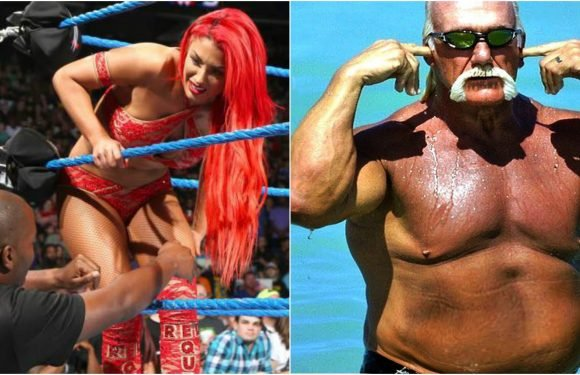 15 WWE Stars Who Recently Fell From Grace (And Couldn't Get Back Up)