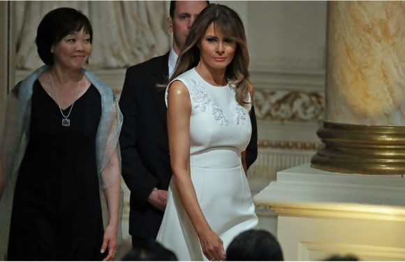 Melania Trump Dazzled the Japanese Prime Minister With Her Glitter Pink Dinner Heels