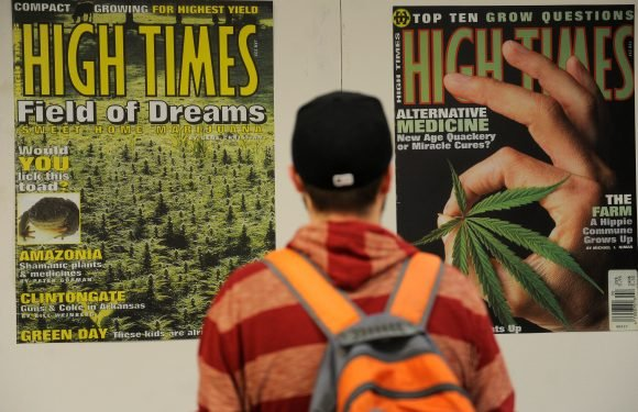 Marijuana publications proving to be a pot of gold