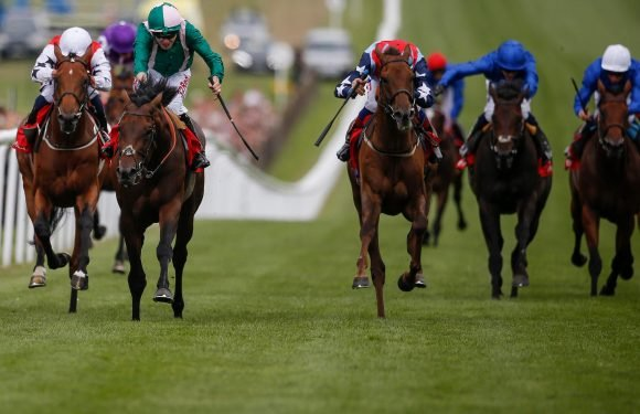 Horse racing tips: Newmarket, Exeter and Carlisle – Templegate's betting preview for the racing this Tuesday, April 17
