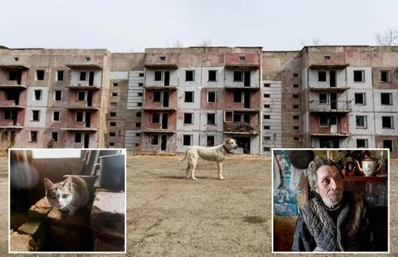 Inside the Siberian ghost town where the last resident lives alone in the crumbling ruins of a former army base