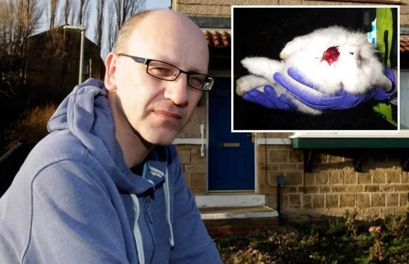 Man who beat pet rabbits until their guts fell out walks free from court