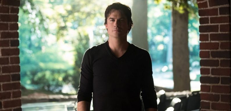 Vampire Diaries star Ian Somerhalder to lead another vampire series – this time on Netflix