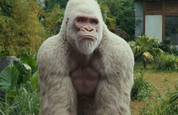 "Rampage's George the mutant gorilla was designed to be as ""gigantic"" and ""tough"" as Dwayne Johnson"