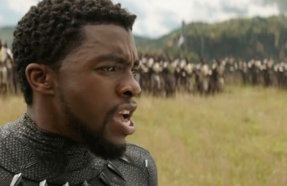 Black Panther and Wakanda take centre stage in new Avengers: Infinity War teaser