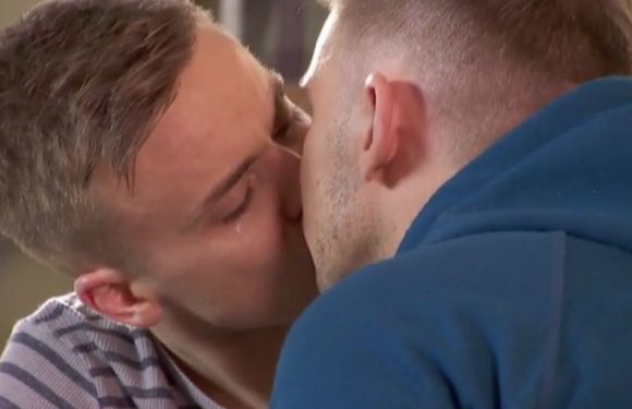Hollyoaks reunites Harry and Ste after Dee Dee's devastating diagnosis