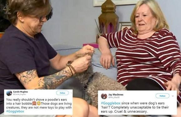 Furious Gogglebox viewers brand Stephen Webb 'cruel and disgraceful' for tying his dogs' ears up