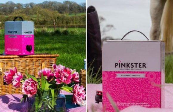 You can now get giant boxes of pink gin… and they're perfect for your summer BBQ