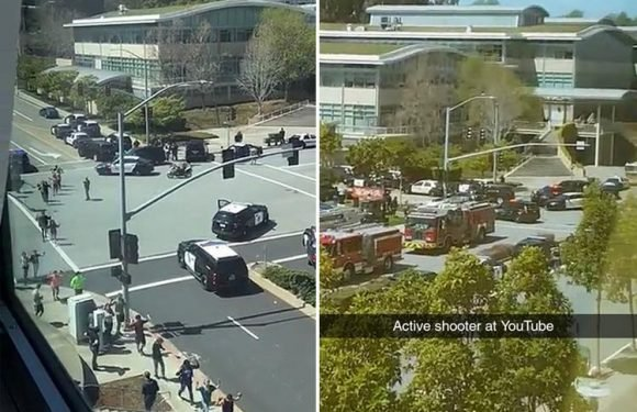 YouTube shooting at San Bruno headquarters carried out by female attacker who shot three people before 'killing herself' in bloodbath