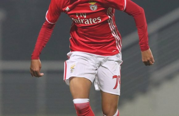 Arsenal battle Manchester United and Man City for £35million Benfica wonderkid Joao Felix