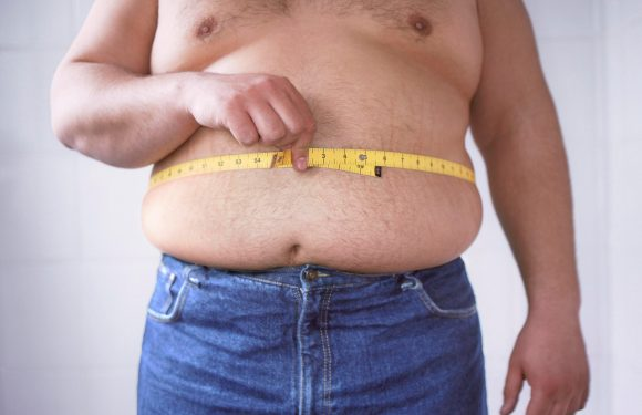 Fat stomach is still a heart attack risk — even if you are slim