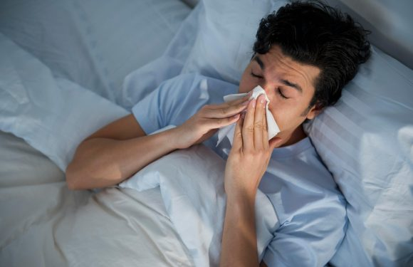 Brisbane flu: New killer flu strain is 'one of the most dangerous in the world – and could trigger deadliest winter yet'