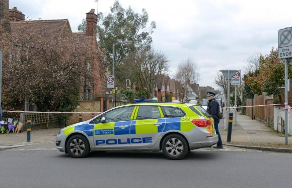 Young man stabbed to death in Wandsworth after leaving bar is 13th London murder victim in 19 days
