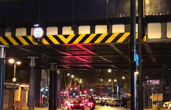 Hackney stabbing – Man knifed to death in Morning Lane as London murder count hits 50