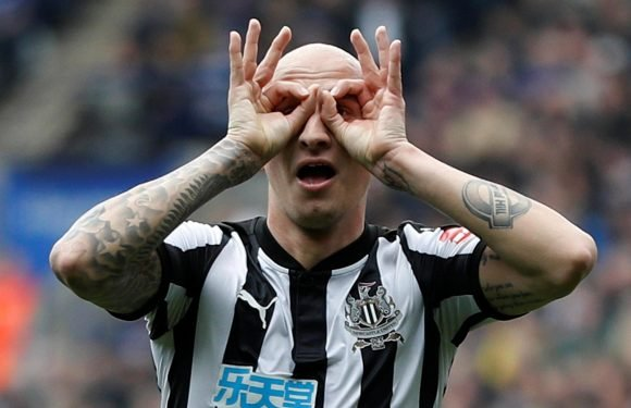 Newcastle ace Jonjo Shelvey believes he's playing just as well as when he won last England cap