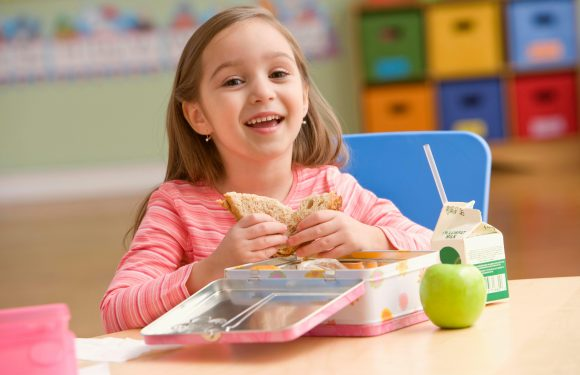 Mum accused of 'starving' daughter after friend sees her packed lunch… so where do YOU stand?