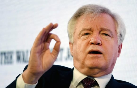 David Davis warns MPs could veto any final Brexit deal unless Parliament is given a 'substantive' idea of our future trading relationship with the EU