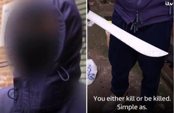 Thug reveals huge machete used by UK gangs as he lifts lid on bloodshed on Britain's streets