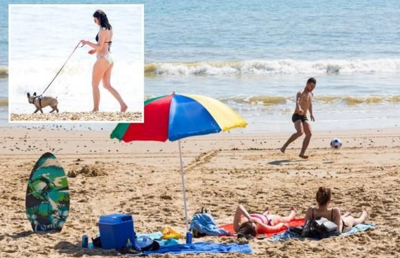 UK heatwave – Sunbathing Brits warned to stay out of the sea over fears freezing waters could cause hypothermia