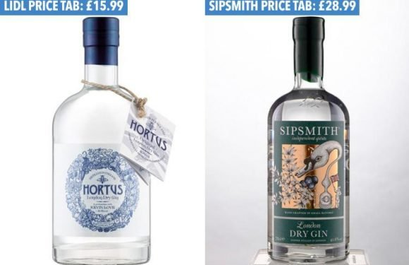 This Lidl gin has just beaten its posh £30 rival in a blind taste test… and it comes in at HALF the price