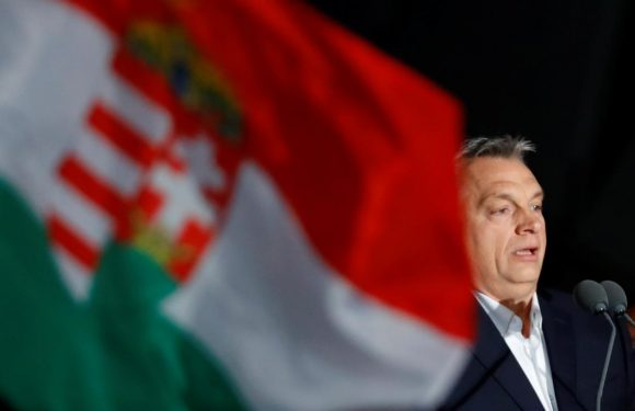 Hungary PM Orban declares election victory