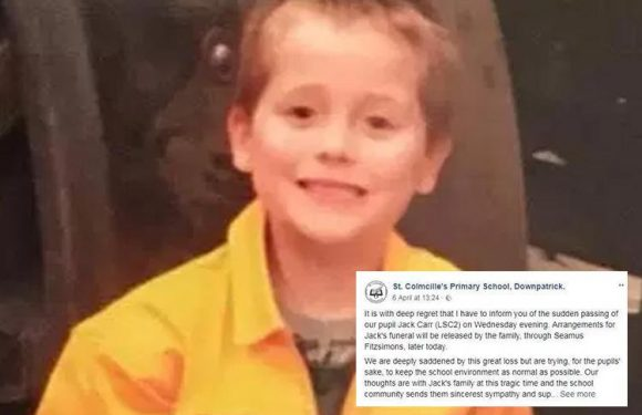 Double family tragedy as 'lovely wee boy', 6, chokes to death after sister dies