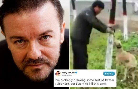 Ricky Gervais says he wants to 'kill' man caught on video slaughtering dog with a meat cleaver