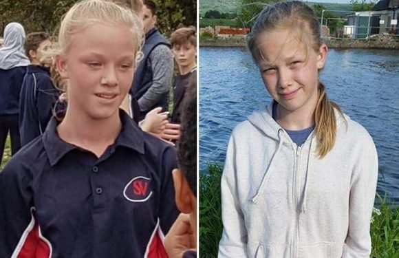 Girl, 12, found dead by her twin brother had 'inhaled spray from deodorant cans'
