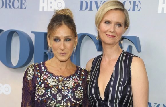 Sarah Jessica Parker didn't know Cynthia Nixon would run for governor