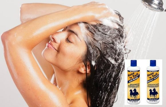 This HORSE shampoo is loved by beauty fans wanting shinier locks… so would YOU try it?