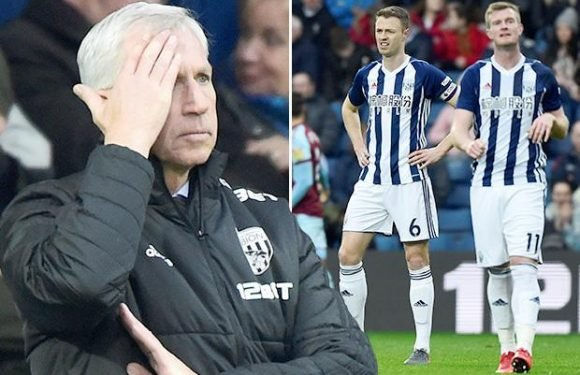 West Brom part with Alan Pardew 'by mutual consent' with the Baggies rock bottom of the Premier League