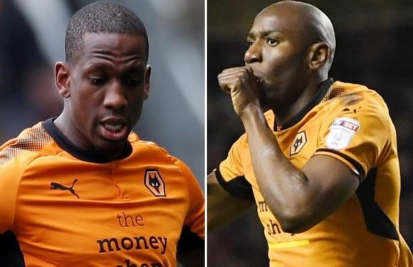 Wolves set to spend £20m to snap-up Willy Boly and Benik Afobe on long-term deals after Premier League promotion