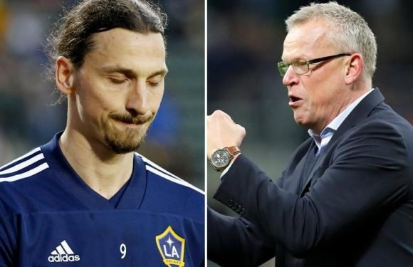 Former Manchester United striker Zlatan Ibrahimovic 'will NOT be at World Cup', confirms Sweden manager Janne Andersson