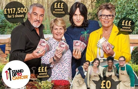 Great British Bake Off king Paul Hollywood and other co-stars trousered thousands from 'charity' specials