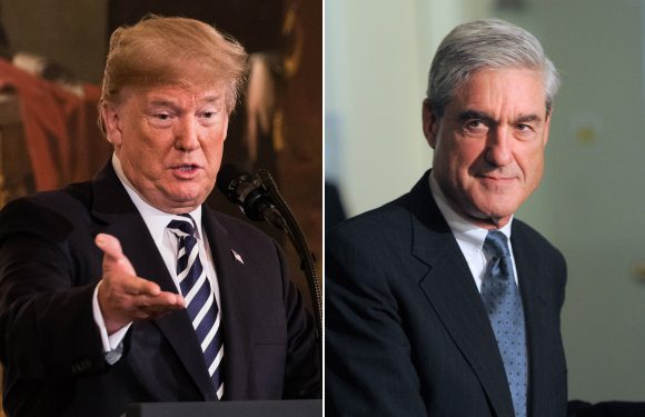 Trump says Mueller probe has 'destroyed' people's lives