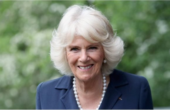 15 Things You Might Not Know About Camilla, the Woman Who Stole Prince Charles's Heart